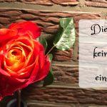 """Rose mit Titel """"Diese Rose ist keine Rose ist eine Rose"""""""